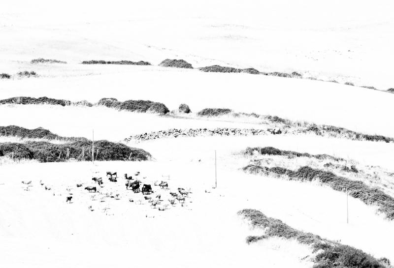 Nevica Fuoco 3